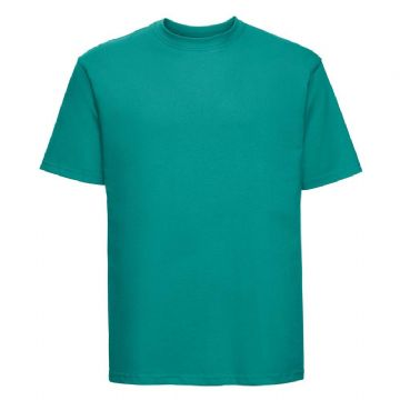 NEWTON PARK PRIMARY SCHOOL WINTER EMERALD  T- SHIRT WITH LOGO